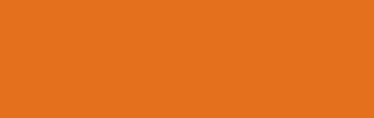CARE India Logo