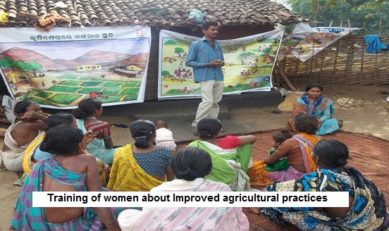 Promoting Collective Action to Increase Tribals' Access to Forest