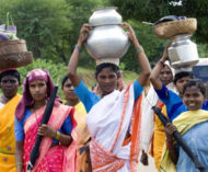 Enhancing The Sustainable Farming Initiative (ESFI) By Integrating Gender And Nutrition